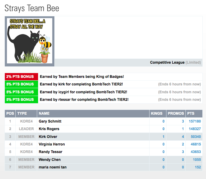 CTP Teams new team Strays Team Bee launched 290914