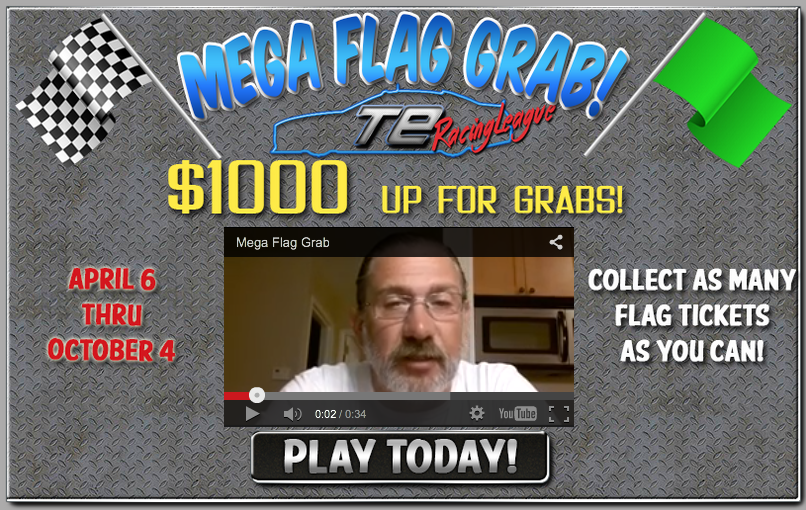 Robert Arnold Mega Flag Grab splash page